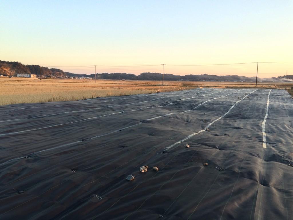第5号発電所 防草シート施工完了